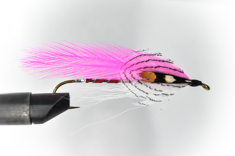 Pink Ghost / Carrie's Fancy Streamer